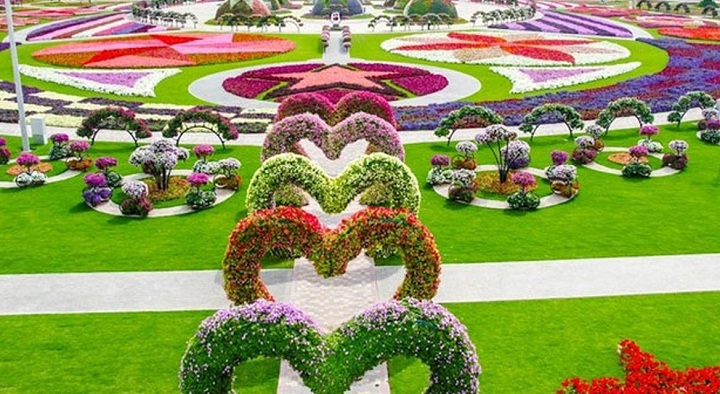 grădina El AIn