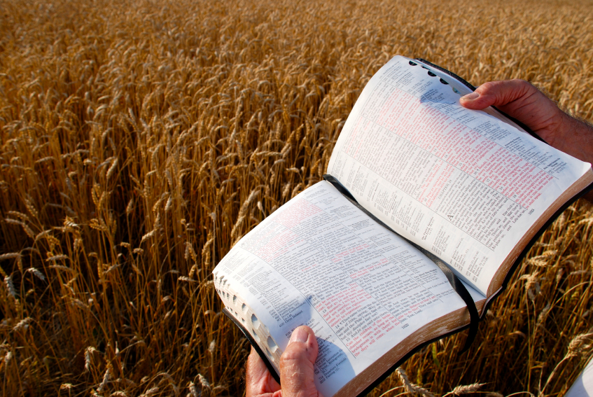 This Bible is open to Mark 9:37, 38 refering to a harvest and needing workers.