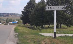 Камынино